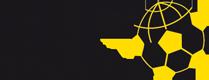 BVB International Logo